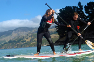 Fun SUP racing during Sat Sup Session in Corsair Bay, Lyttelton.